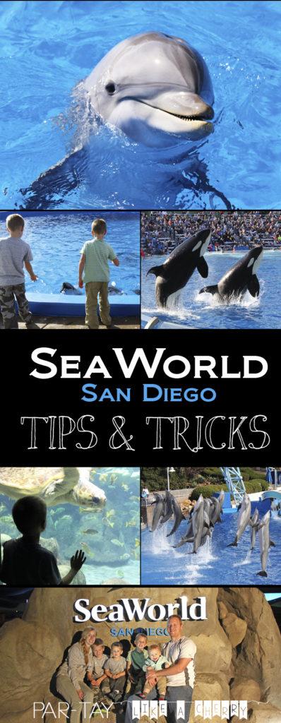 sea world san diego tips and tricks, if its your first time to sea world san diego read this first and do sea world like a pro!